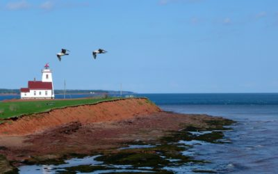 Prince Edward Island opportunities for all
